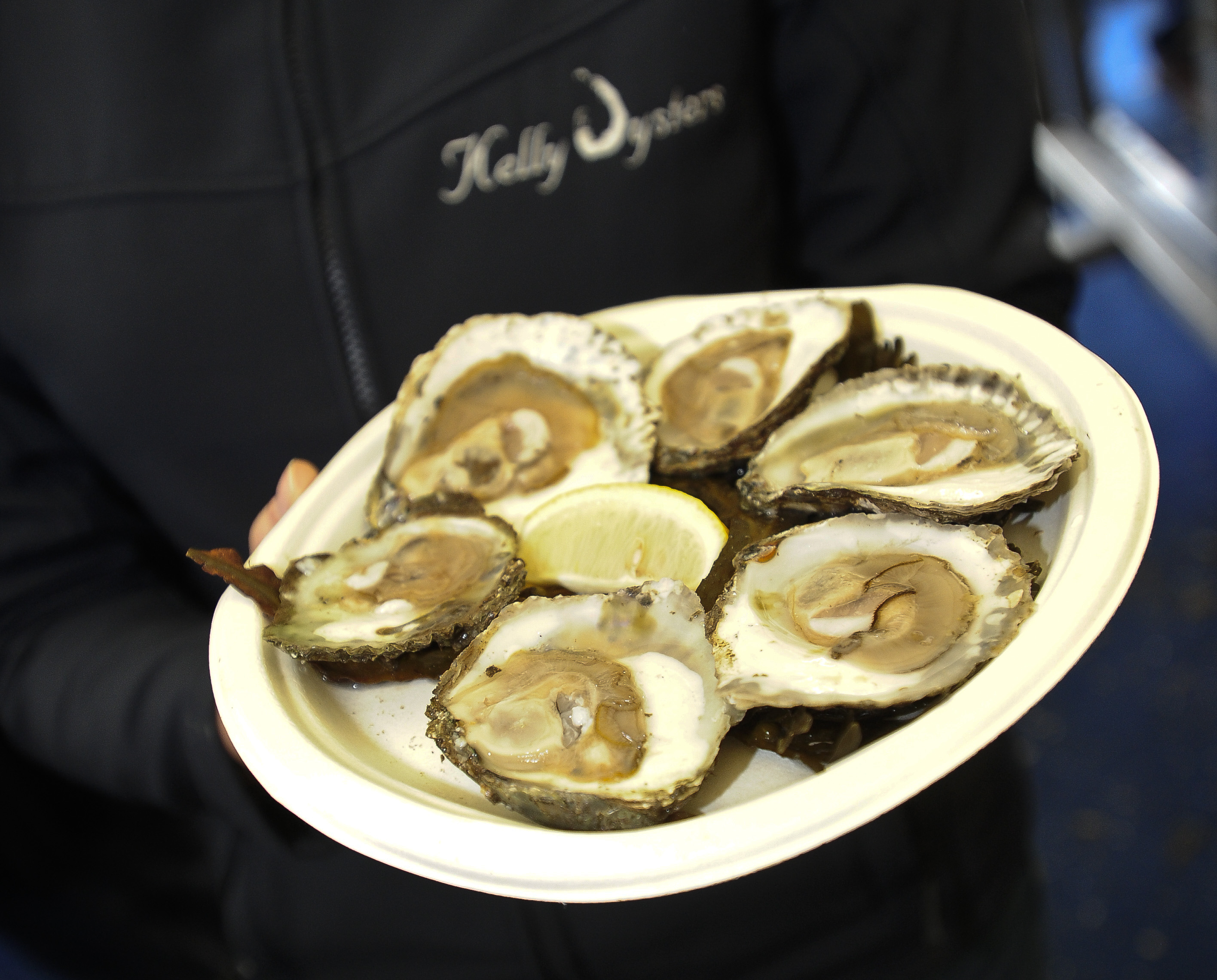 Oysters - ready to eat!