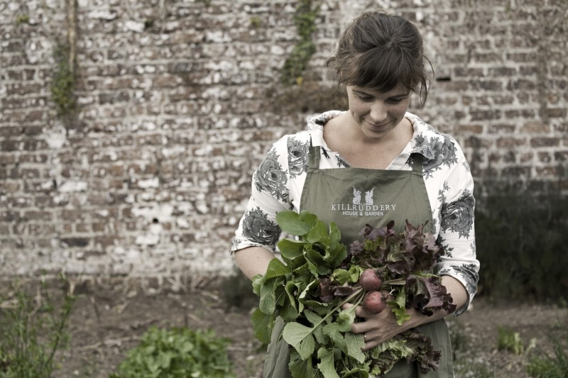 Fionnuala foraging in the walled garden at Killruddery, preparing delicious, organically grown salads for her guests
