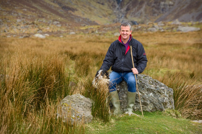 Willie Drohan of Comeragh Mountain Lamb, farming his family land, alongside his neighbours where the lamb roam on heathery hills and drink the fresh spring waters, making this Comeragh Mountain Lamb taste so unique