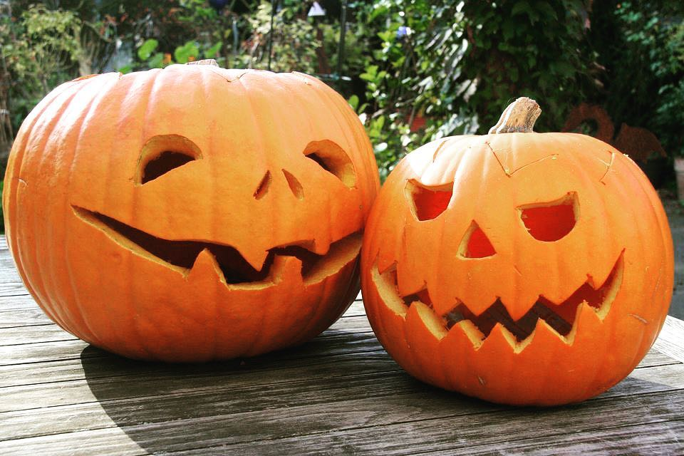 Pick and carve a pumpkin from our patch in our annual fun day celebrating Ireland's most ancient festival.